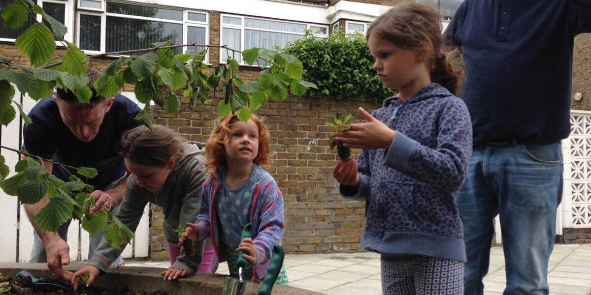 Edible Garden 3