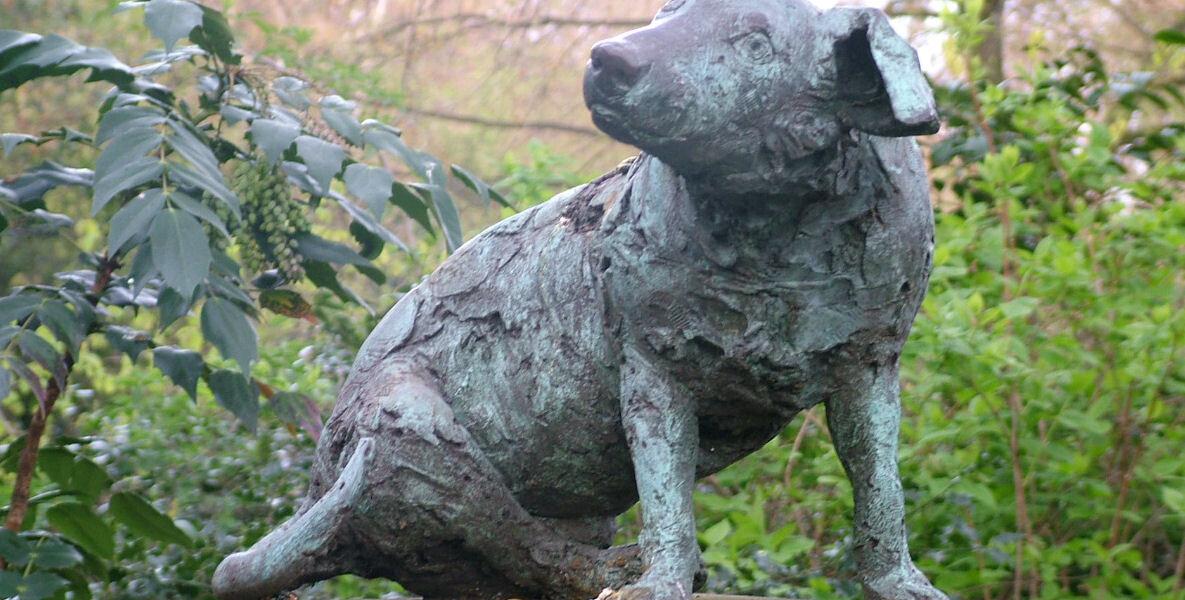 Brown_Dog_-_Battersea_Park_-_2008-04-09