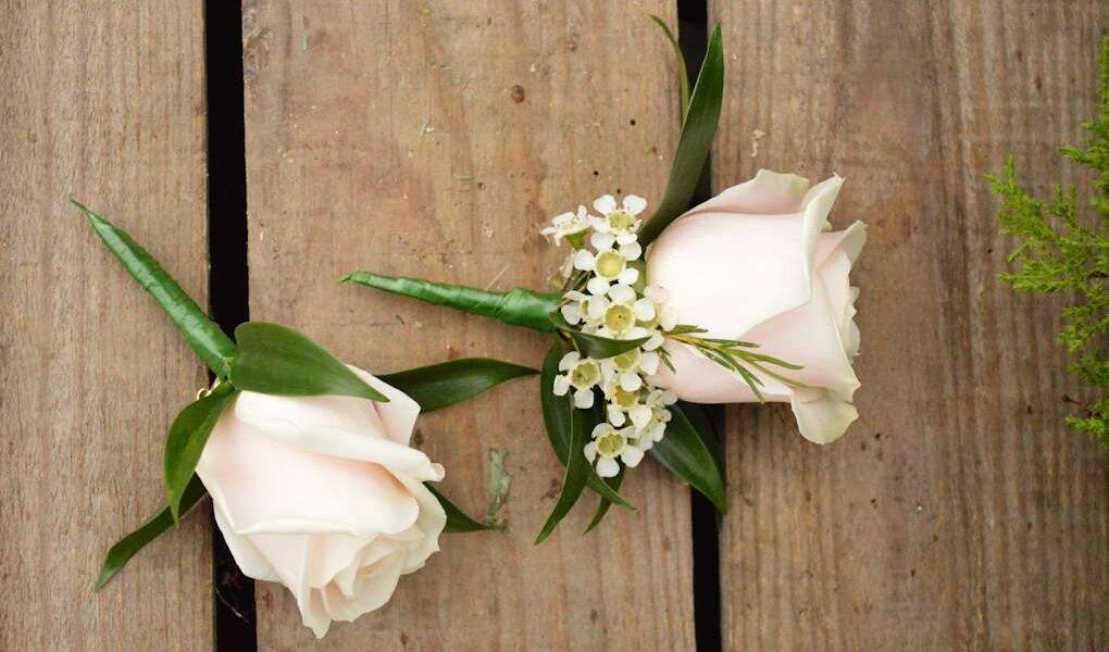 flower-pic1