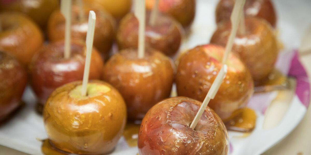 Harvest apples_web
