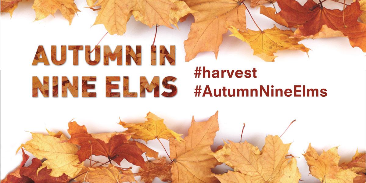 Autumn in Nine Elms #harvest #AutumnNineElms