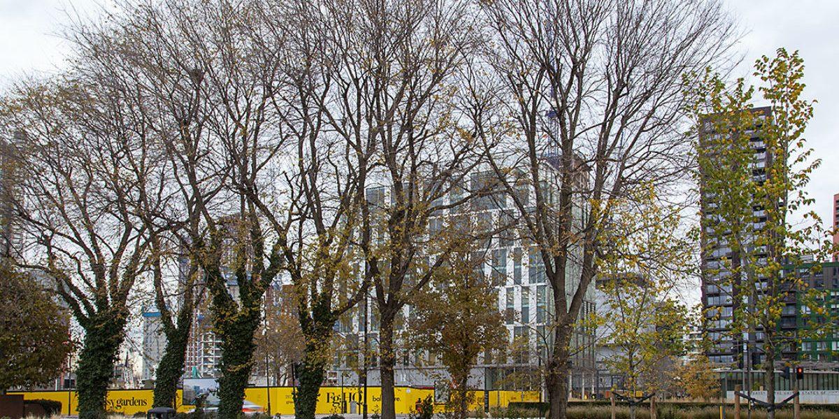 The nine elms in winter_credit_Paul Wood
