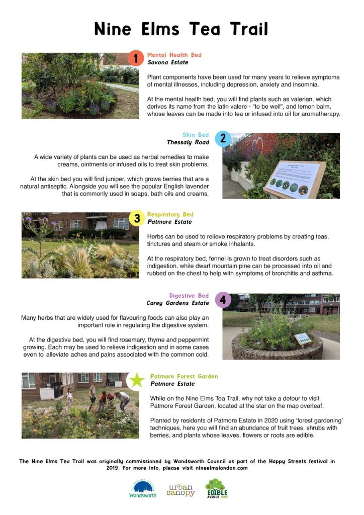 Pictures of the beds and information on the plants