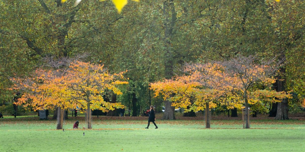 Autumn in Battersea Park_1200px