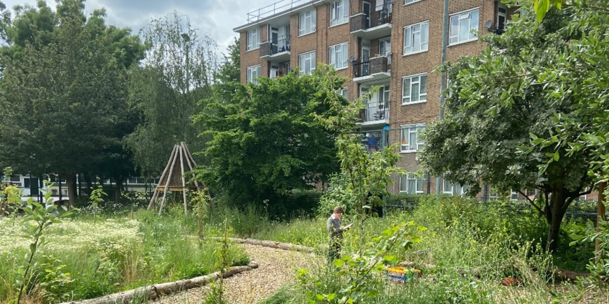 Griffin Primary Forest School Garden with pupil
